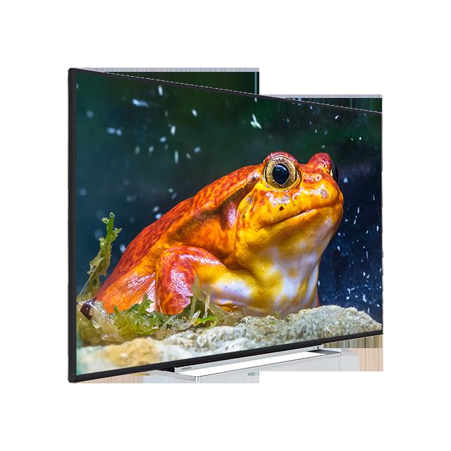 TVs Rental Goods